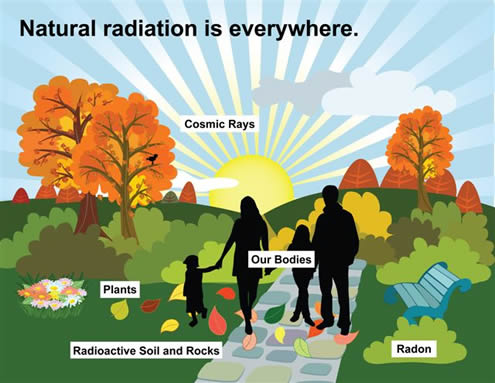 Image Credit: http://nuclearsafety.gc.ca